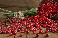 Cranberry rozprasza na drewnianym stole Zdjęcie Stock
