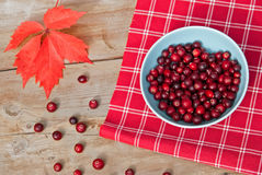 Cranberry on rustical wood table Stock Photo
