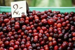 Cranberry`s price. Vegetable market in Riga. autumn harvest Stock Photos