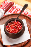 Cranberry Sauce Royalty Free Stock Photos