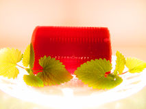 Cranberry Sauce. Fancy cranberry sauce with mint Stock Photography