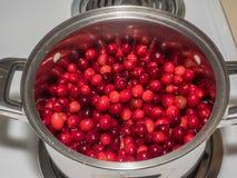 Cranberry sauce Stock Image