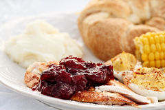 Cranberry Sauce Over Roast Turkey Royalty Free Stock Photo