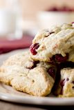 Cranberry Scones Royalty Free Stock Images