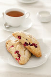 Cranberry Scones Stock Photo