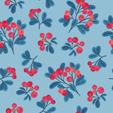 Cranberry seamless pattern. Seamless pattern with branches of red cranberries on light blue background Stock Photography