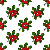 Cranberry, seamless pattern 1. Сowberry with leaves and branches.  Illustration doodle sketch hand-drawn bunch of ripened lingonberry. Seamless pattern. Vintage Stock Photos