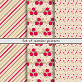 Cranberry, a set of seamless patterns Stock Photos