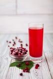 Cranberry soku szkła czerwień Zdjęcia Stock