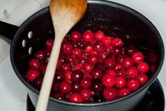 cranberry som gör sås arkivbild