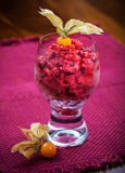 Cranberry sorbet for Christmas Royalty Free Stock Photo