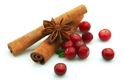 Cranberry and spices Royalty Free Stock Photos