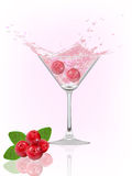 Cranberry splash Royalty Free Stock Images