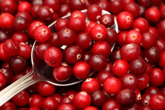 Cranberry on spoon Stock Photography