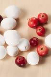 Cranberry in a sugar powder Stock Photos