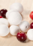 Cranberry in a sugar powder Stock Photography