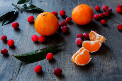 Cranberry and tangerine Royalty Free Stock Photo