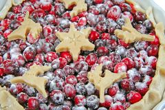 Cranberry tart. Isolated. Stock Photo