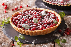 Cranberry tart with jam, powdered sugar decorated with mint clos Stock Images
