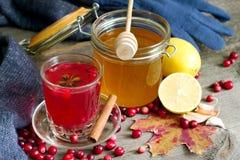 Cranberry tea, honey and lemon on autumn table Royalty Free Stock Photography