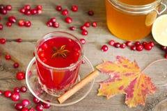 Cranberry tea, honey and lemon on autumn table Stock Photography