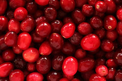Cranberry texture Stock Photos