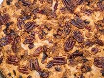 Cranberry tort Zdjęcie Royalty Free