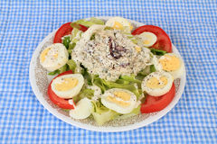 Cranberry and Turkey Salad Royalty Free Stock Image