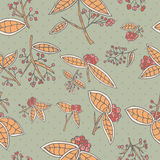 Cranberry vector pattern with leaves and berries. Seamless berries texture for the fill pattern Stock Photo