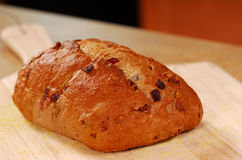 Cranberry walnut bread Royalty Free Stock Photo
