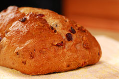 Cranberry walnut bread Royalty Free Stock Photography