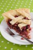 Cranberry Walnut Pie Slice Stock Photo
