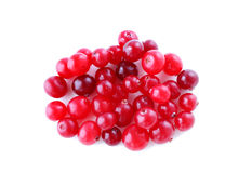 Cranberry on white Stock Image