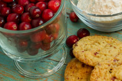 Cranberry White Chocolate Chip Cookies with a side of Cranberrie. S and flour royalty free stock image