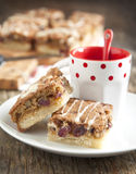 Cranberry, white chocolate and pecan squares Royalty Free Stock Photo