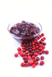 cranberrydriftstopp royaltyfria bilder