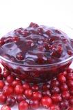 cranberrydriftstopp fotografering för bildbyråer