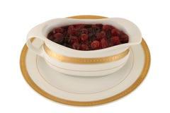 cranberryferiesås Royaltyfri Bild