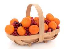 cranberryfruktmandarin royaltyfri fotografi