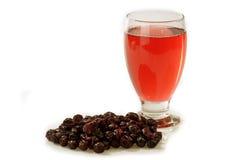 cranberryfruktsaft royaltyfri fotografi