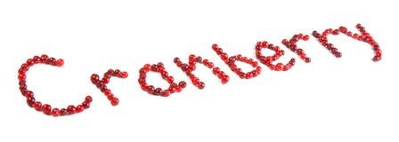 cranberryinskrift fotografering för bildbyråer