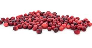 cranberryjuvlar Royaltyfri Bild