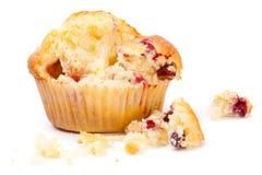 Cranberrymuffin på en bruten vitbakgrund royaltyfri foto
