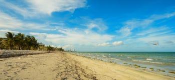 Crandon Park Beach. Beautiful Crandon Park Beach located in Key Biscayne in Miami Royalty Free Stock Image