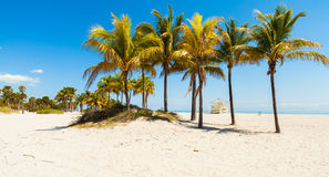 Crandon Park Beach Stock Image