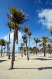 Crandon Park Beach Miami Stock Image
