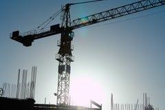 Crane-3 foto de stock royalty free