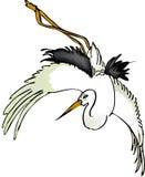 Crane. A illustration, vector for a Crane, storks Royalty Free Stock Images