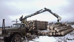 Crane arm loader unloads wood logs from heavy truck at sawmill facility. Cold cloudy winter day stock video