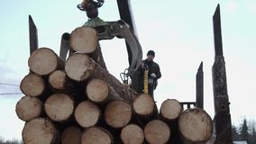 Crane arm loader unloads wood logs from heavy truck at sawmill factory. Cold cloudy winter day stock video